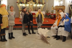 sisak_katedral